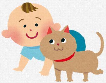 日本人の2大癒しは「可愛い子どもと猫動画」